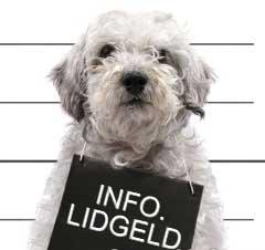 Lidgeld 2017-2018